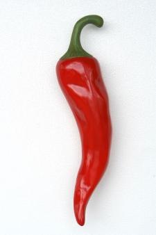 Red Hot Chilipepper